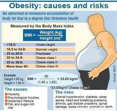 Cholesterol obesity picture 10