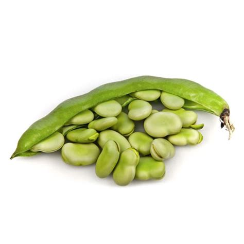 fava beans and hair growth picture 9