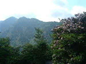 smoke mountain picture 14