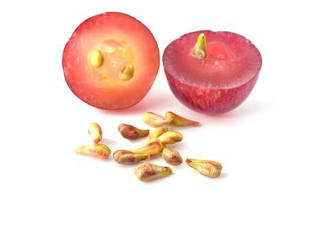 anti inflammatory diet picture 8