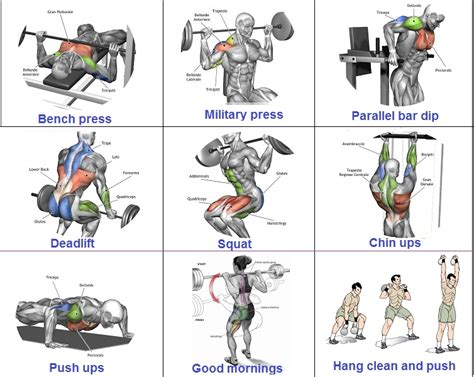 free tips on how to gain muscle and picture 10
