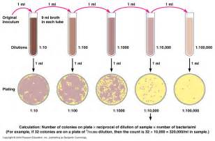 measures turbidity of bacterial growth picture 11