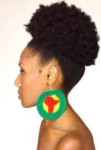 afro hair style picture 17