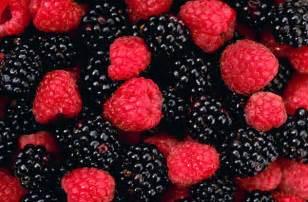 fungsi acai berry picture 19