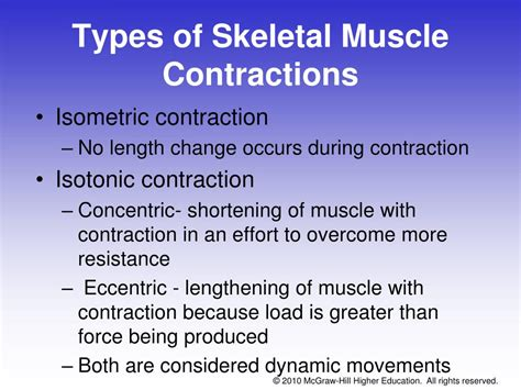 isometric and isotonic muscle contraction picture 13