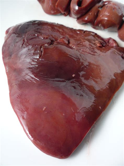 a picture of a real human liver picture 15