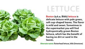 lettuce to thyroid problems picture 5