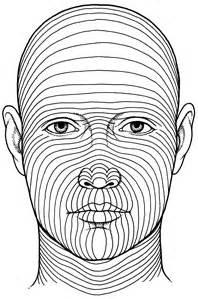 skin line picture 7