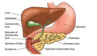 gall bladder opperation picture 1