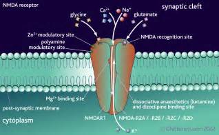 natural nicotine receptor blockers picture 9