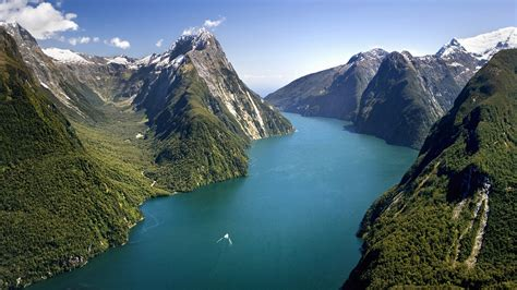 .new zealand picture 1