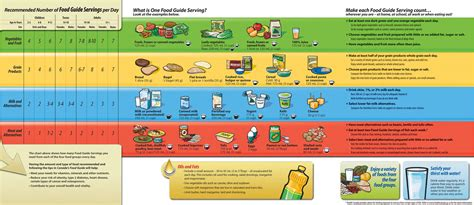 2007 dietary guidelines picture 9