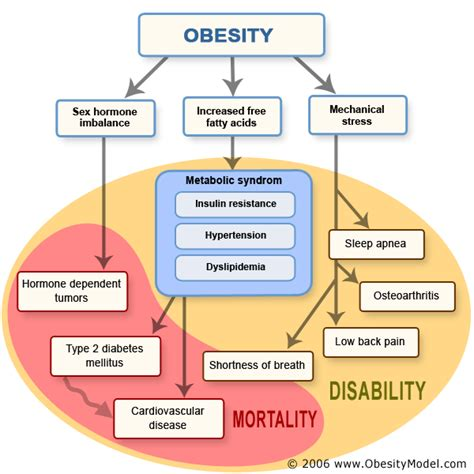 cholesterol obeisity picture 9
