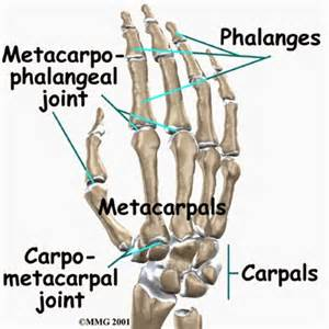 causes of hand and joint pain picture 2