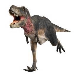 dinosaur h picture 14