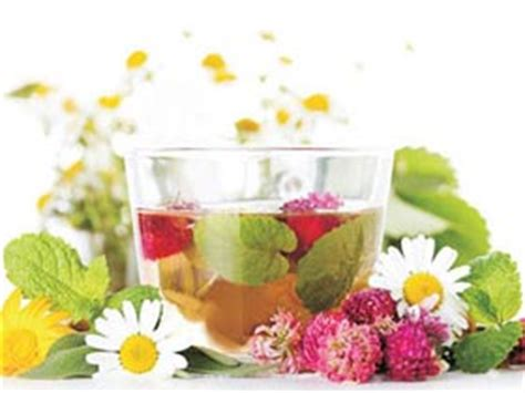 herbal recipes picture 11