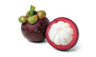 garcinia mangostana homeopathic picture 9