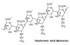 hyaluronic acid and laser hair removal and vitamin c cream picture 15