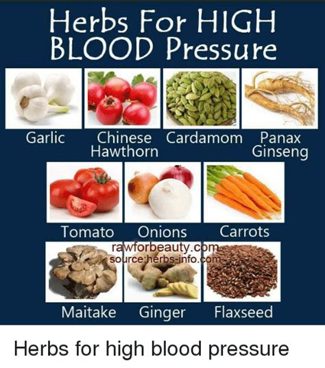 Ginseng high blood pressure picture 2