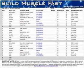 excercises to build muscle picture 2