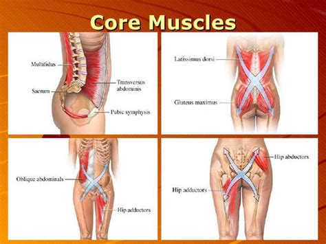 back muscle pain picture 7