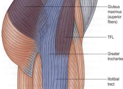 cure for muscle fasciae picture 9