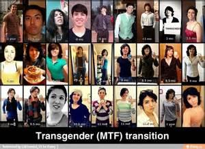 transition micropil dosage mtf picture 2