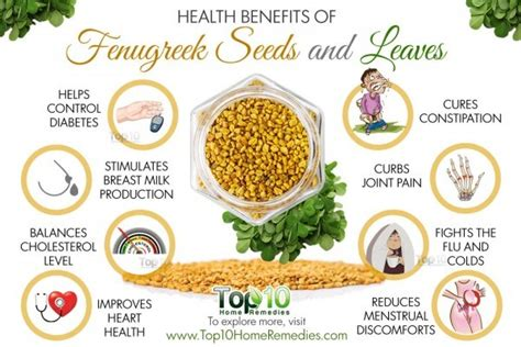 fenugreek picture 7