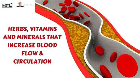 best herb to increase blood flow to the picture 1