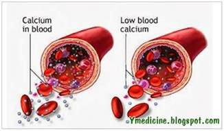 how do blood products affect calcium levels picture 1