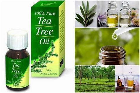 yeast infection tea tree treatment picture 1