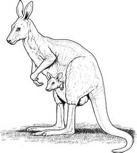 kangaroo its easy to be a woman pill picture 13