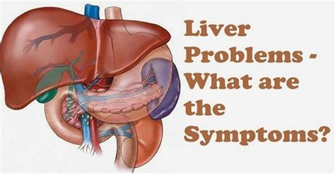 do natural male enhancers effect liver picture 12