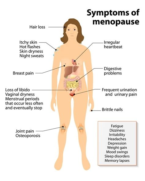 sexuality and aging and menopause picture 1
