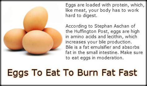 programs burning fat fast picture 14