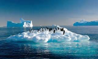 antarctica article of problem and solution picture 5