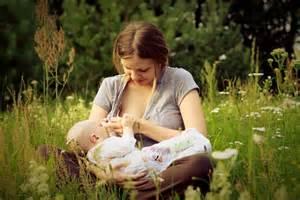 fenugreek breastfeeding picture 5