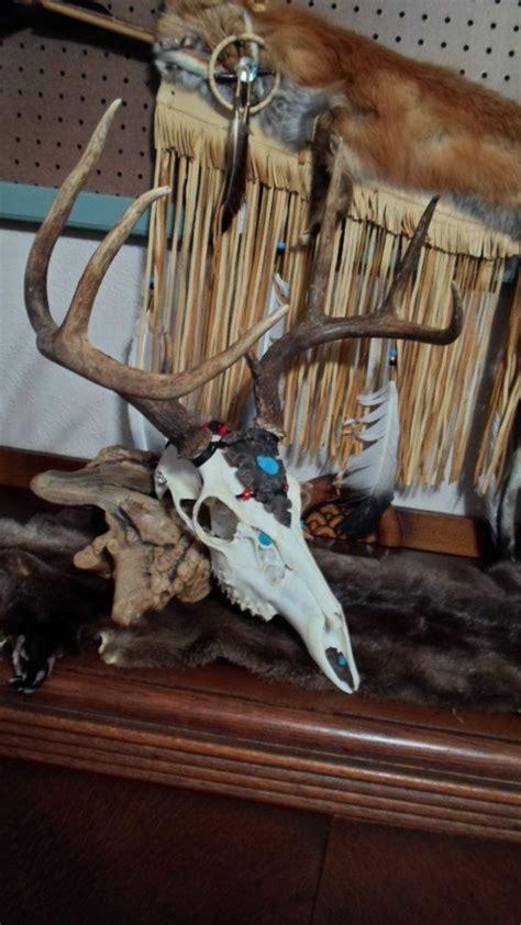 native american deer skull mounts picture 5