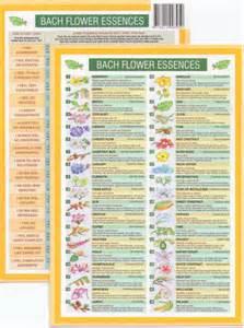 herbal remedies picture 1