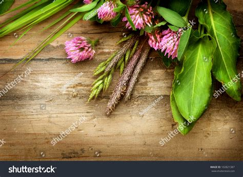 what is the controversy over natural herbs picture 5