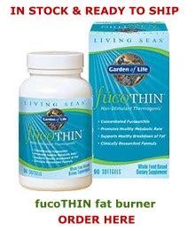 fat burner solution gel application picture 6