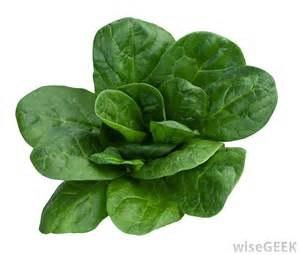 is green leafy lettuce good for people with picture 18