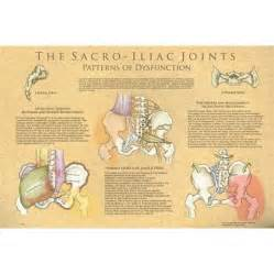 sacroiliac joint pressure points chart picture 15