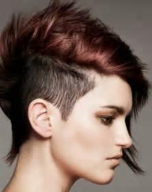 punk rock hair cuts picture 9