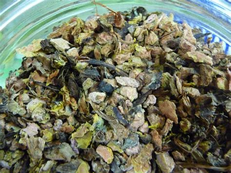 chinese herbs tea tn picture 18