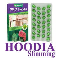 who sales hoodia diet products picture 5