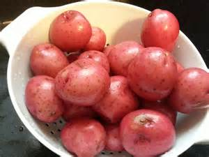 red skin potatoes picture 7