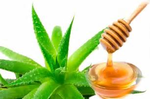 aloe and acne picture 2