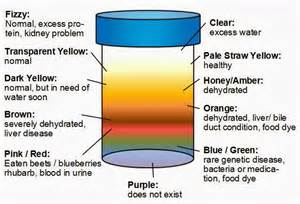 is it normal for your urine to smell picture 13