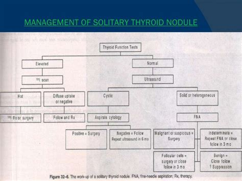 dominant solitary thyroid nodule picture 11